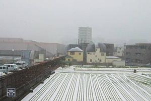 150205yuki