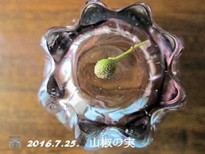 160725sansyo_mi2